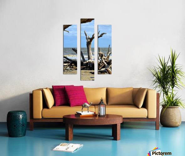 Driftwood Beach Uplifting Canvas print