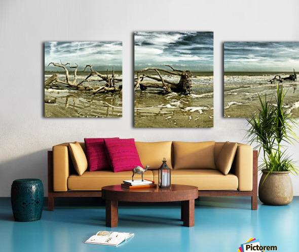 Driftwood Beach Panorama 103 Blackgold Canvas print