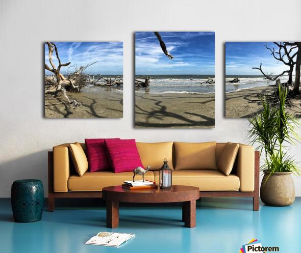 Driftwood Beach Panorama Shadows Canvas print