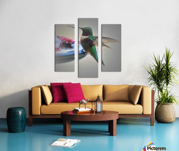 Colibris Impression sur toile