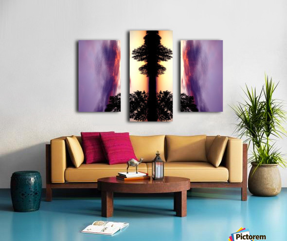 nube 47 Canvas print