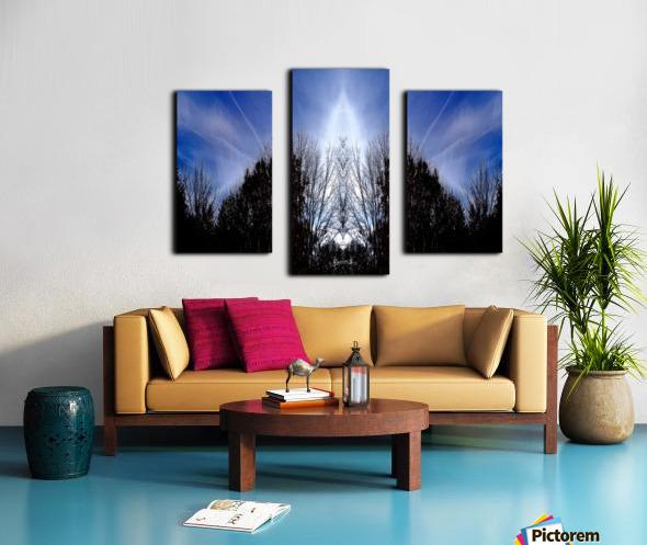 nube 56 Canvas print