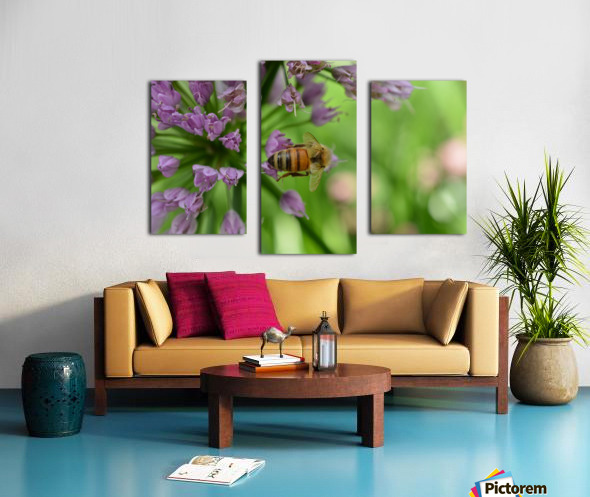 Bees & Flowers Photography Canvas print