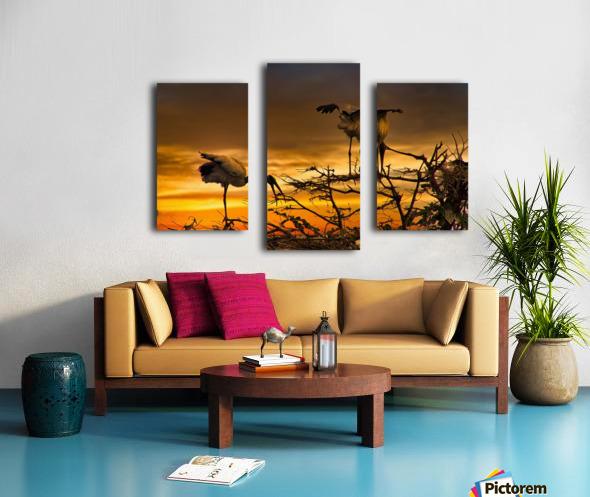 Wood Storks at Sunset Canvas print