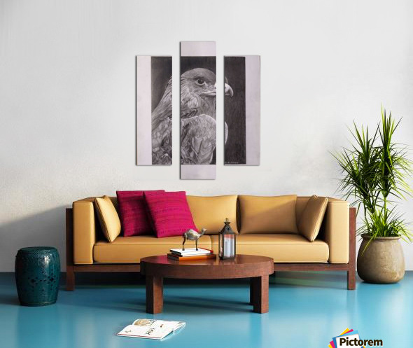 Falcon_DKS Canvas print