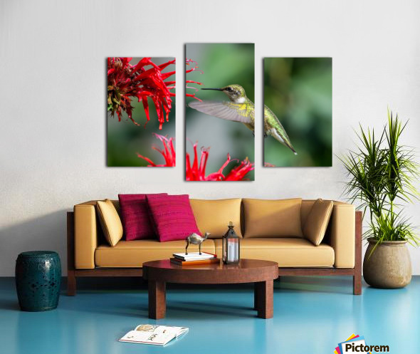 The Happy Bird Canvas print