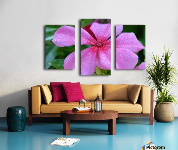 Floral Photograph  Canvas print