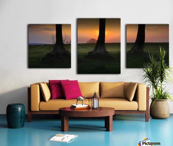 Tree trunks at Ravenhill park Canvas print