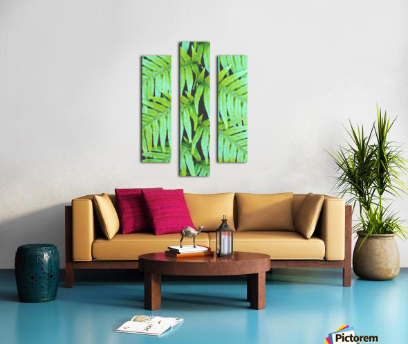 Fern Leaves Canvas print