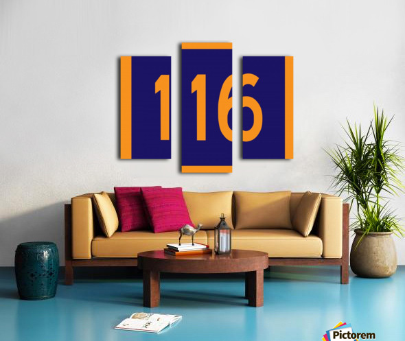 Number 116 Canvas print