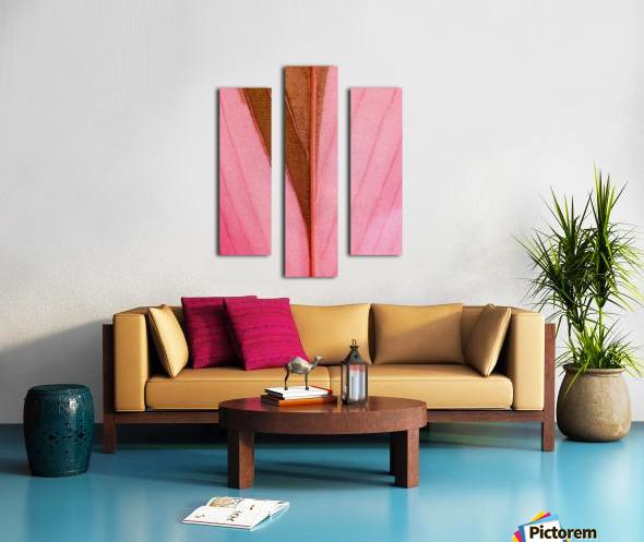 Macro Leaf Canvas print