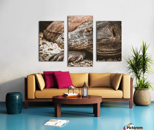 The Komodo Dragon  Canvas print