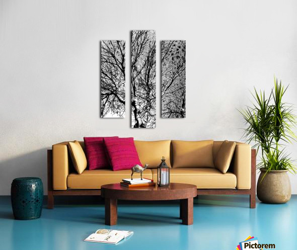 Afridaizy Black & White Trees Threshold029 Canvas print