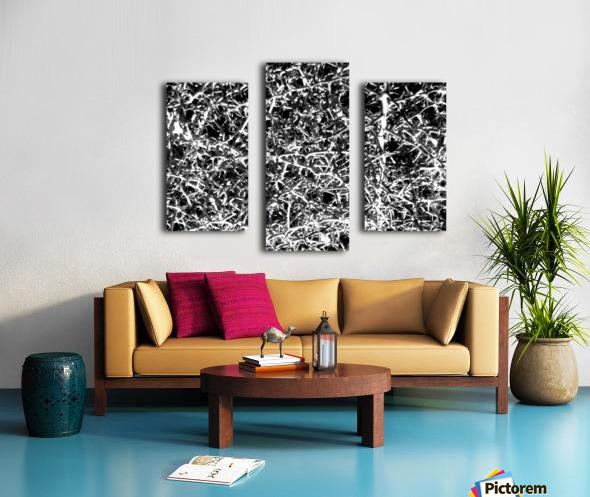 Black & White Nature Canvas print