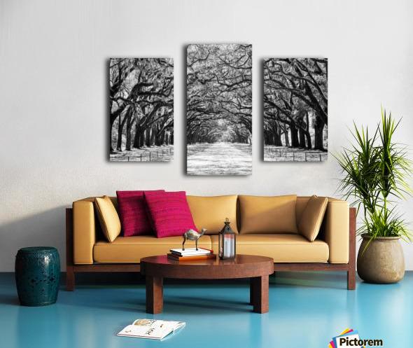 Wormsloe Plantation   Savannah 04420 Canvas print