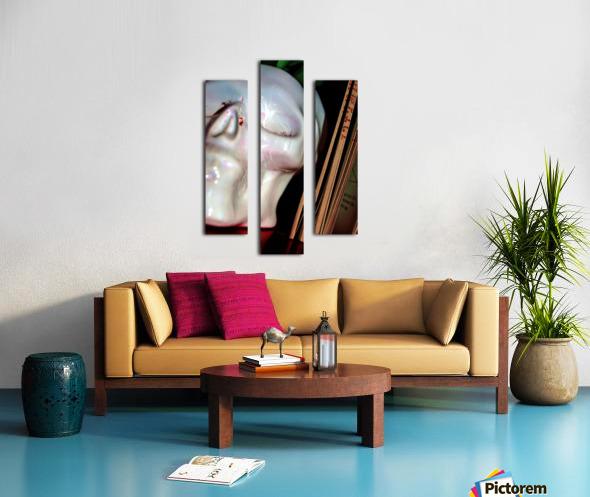 Gross Aroundings Canvas print