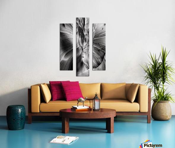 B&W Zebra Slot Canyon I Canvas print