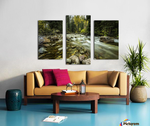 Rocky Mountain Stream Canvas print