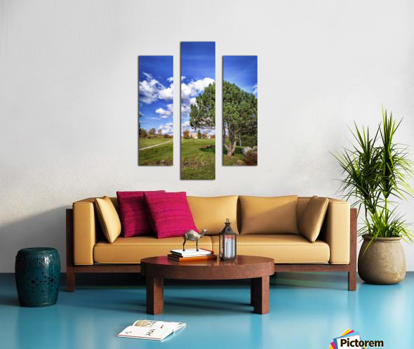 Tree and blue sky with clouds Canvas print