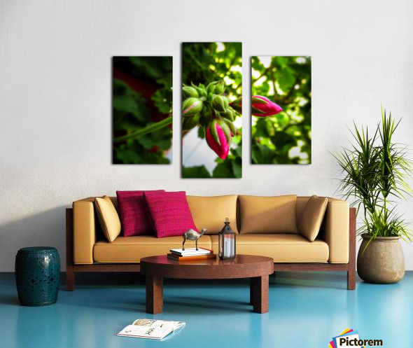 Red buds covered in green Canvas print