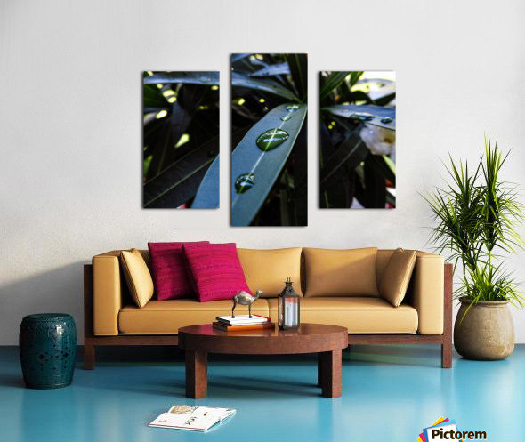 Raindrop on a green leaf Canvas print