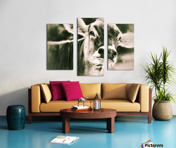 Gitane Canvas print