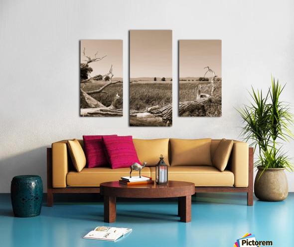 Isle aux Grues Canvas print