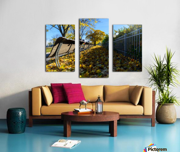 Autumn leaves in the park Canvas print