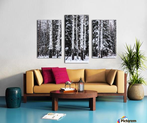 Aspens Snow Blanket Banff National Park Canvas print