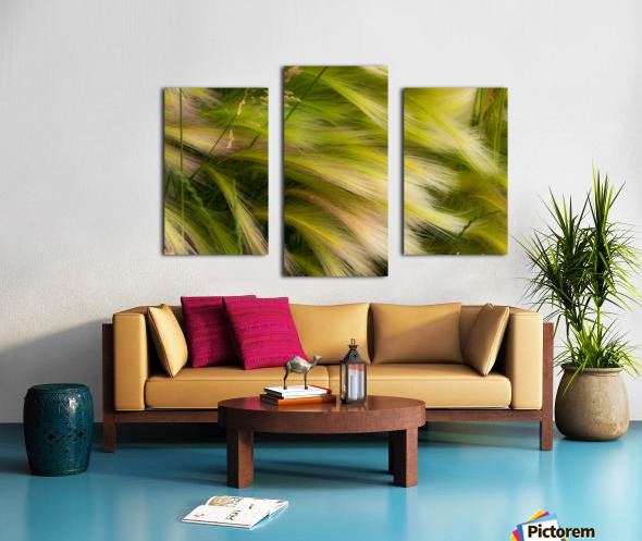 Grasses Of Summer Canvas print