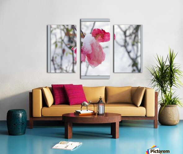 Roses in the snow Canvas print
