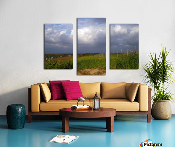 The summer Canvas print