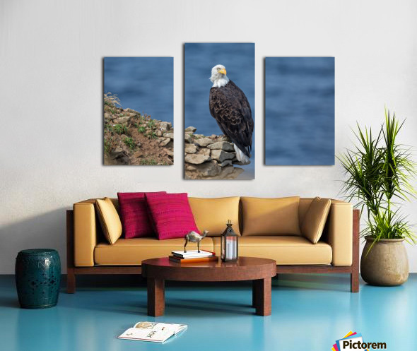 Perched and Proud Canvas print