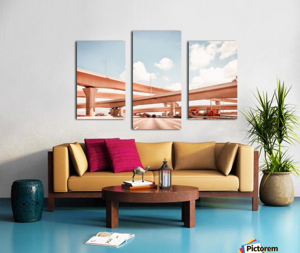 Dolphin Expressway 002 Canvas print