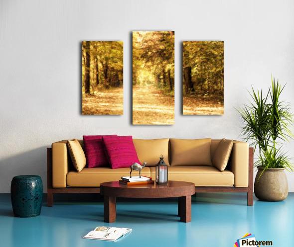 Autumn Path 2 Canvas print