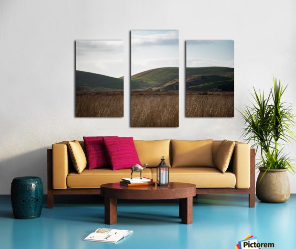Coyote Hills During Sunset Canvas print