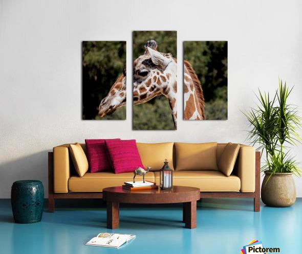 Profile of a Giraffe Canvas print