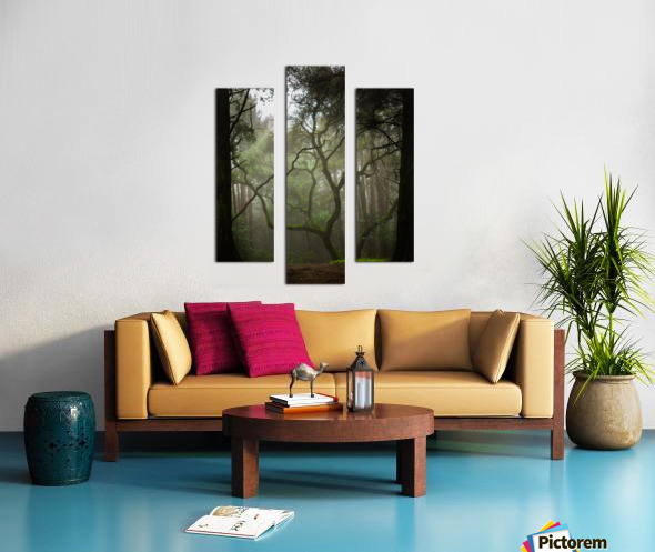 Clearing in the Woods Canvas print