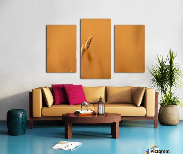 Golden Hour Grass Canvas print