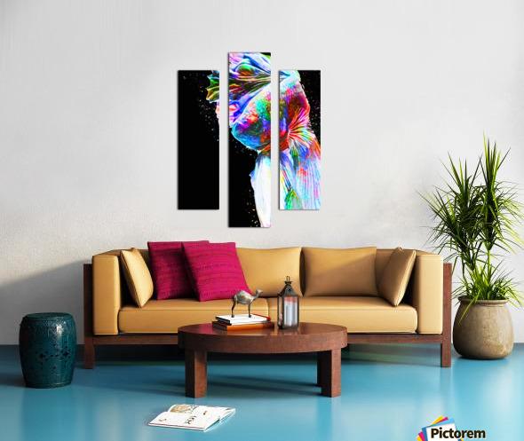 Betta Fish Lover 24 Canvas print