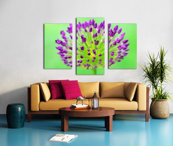 Neon Allium Canvas print