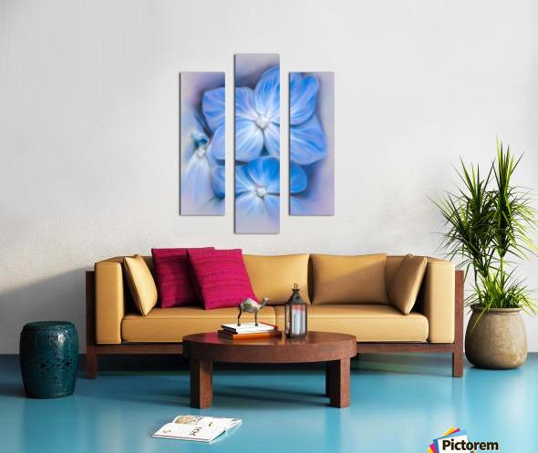 Blue Hydrangea Blossoms Canvas print