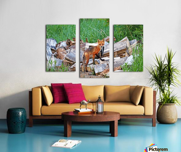 Time To Go Hunting Canvas print