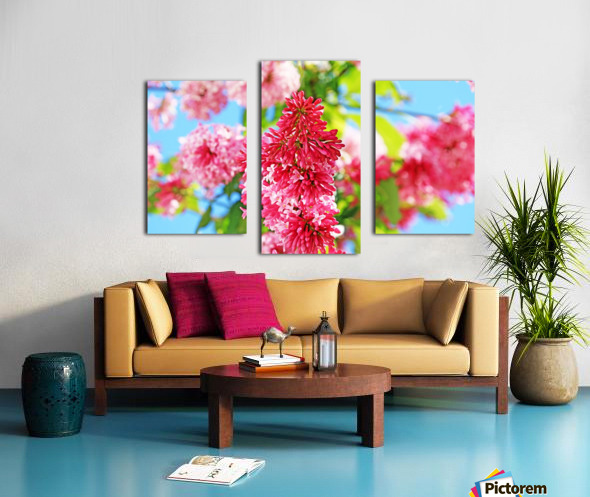 Sweet Side Of Red Canvas print