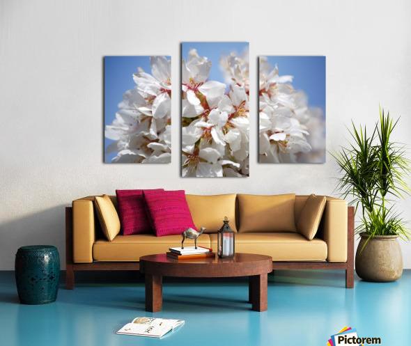 Flower Mix 09 Canvas print