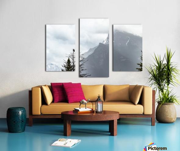 Bald Eagle In Banff National Park Canvas print