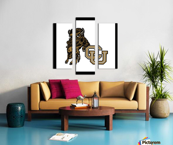 vintage college mascots colorado buffalo art Canvas print