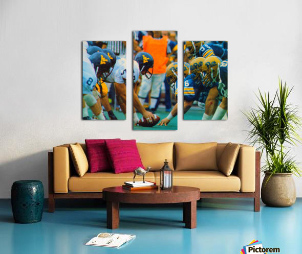 1981 College Football Photo West Virginia Pitt Panthers Wall Art Canvas print