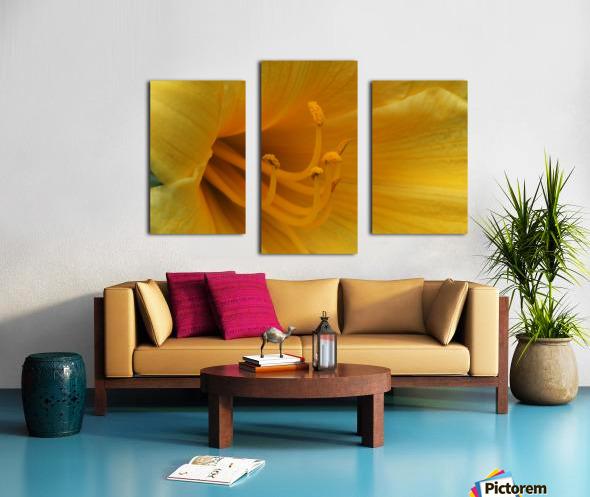 Pistil Canvas print