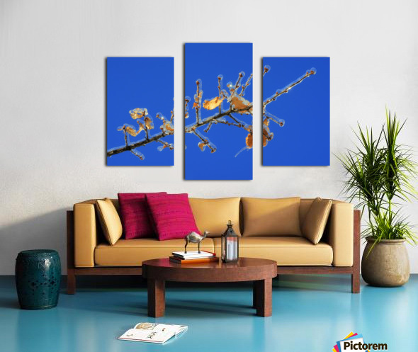 Sucreries glacees Canvas print